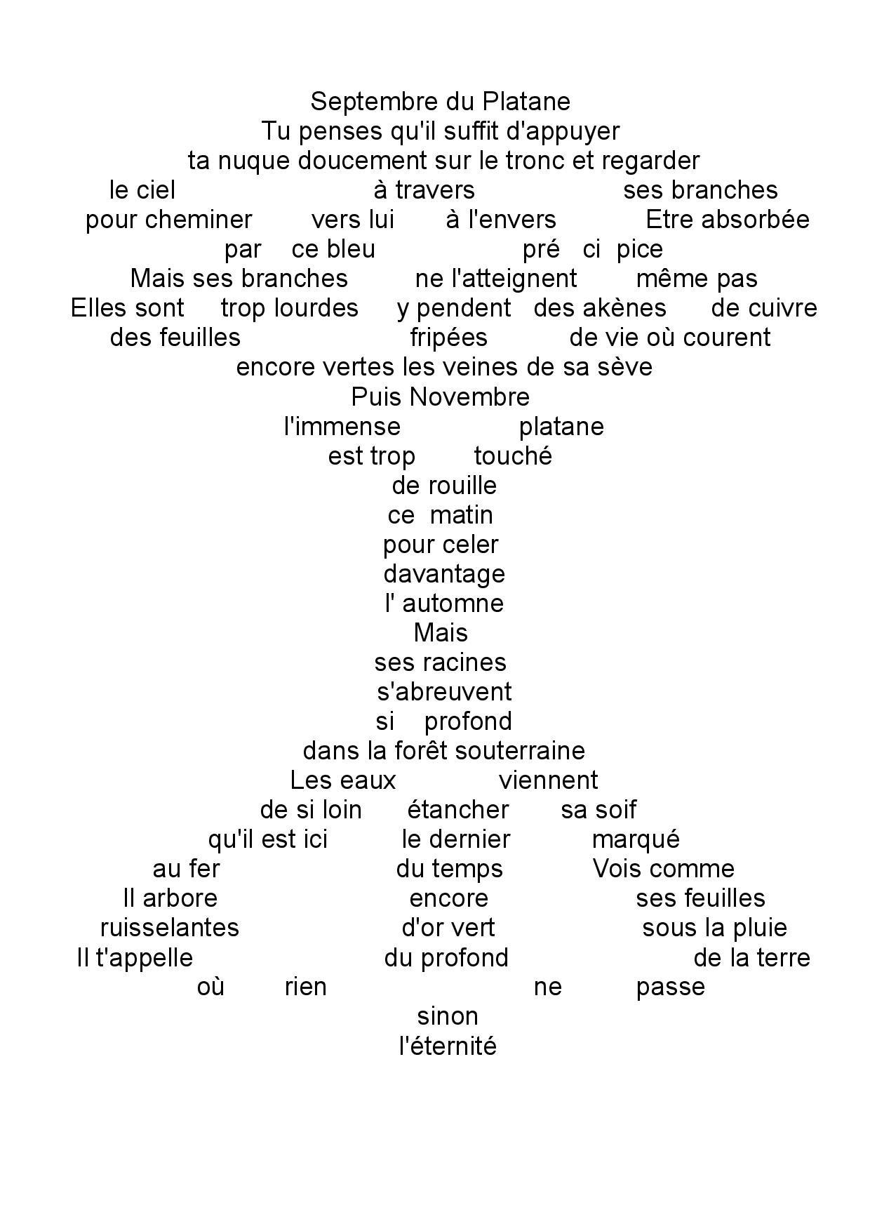 Le Platane pdf-page-001 (1)